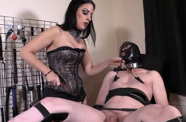 Tashia recommends Slapping porn gif